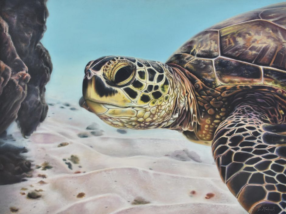 En el arrecife painting