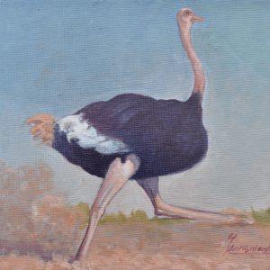 Avestruz 1 painting