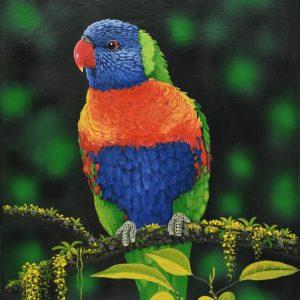 Loro Arcoíris painting