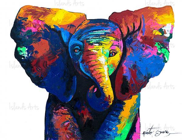 Elephant-Babe-Hector-Suarez